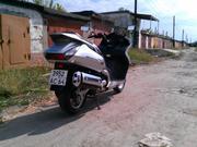 th_058930635_IMAG0397_122_141lo.jpg